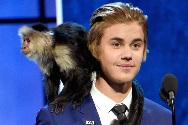 10 exotic celebrity pets choices