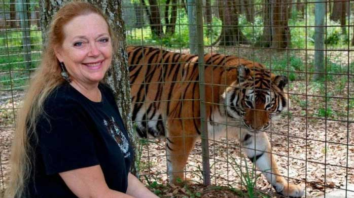 Why should you keep an eye on gay who mistreat big cats or Tiger King from Netflix!